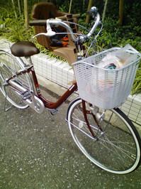 2008_08_29_1.jpg