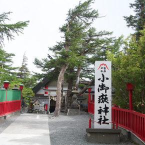 世界文化遺産に登録された富士山に行ってきた