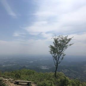 二本木峠・皇鈴山トレイルランニング