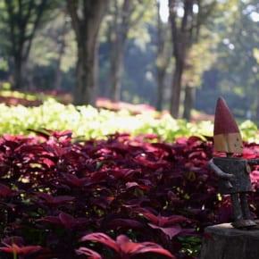 武蔵丘陵森林公園と高級レンズ